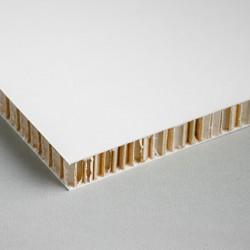Panneau Lightboard (Carton nid d'abeille)